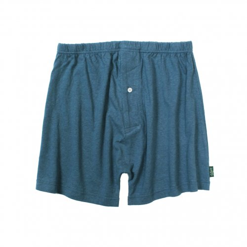 GOHEMP ( ゴーヘンプ ) トランクス BASIC MEN'S SUNNY UNDER SHORTS ( NIAGARA BLUE ) GHC9532RG