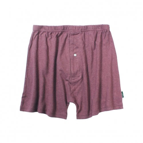 GOHEMP ( ゴーヘンプ ) トランクス BASIC MEN'S SUNNY UNDER SHORTS ( ACAI PALM ) GHC9532RG