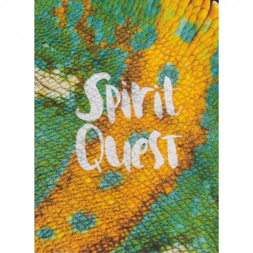「SPIRIT QUEST」 (SKATEBOARD DVD)