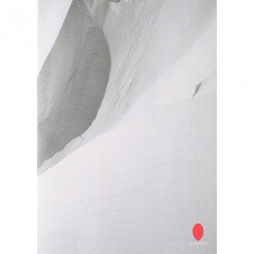GENTEMSTICK ( ゲンテンスティック ) 2020-2021 MODEL ポスターカタログ