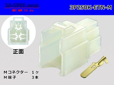 住友電装250型ETNシリーズ3極M側コネクタ端子付/3P250K-ETN-M