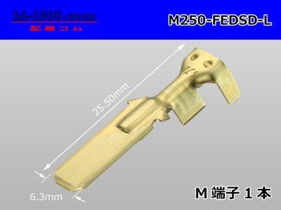 古河電工DSDシリーズ250型M端子(Lサイズ...