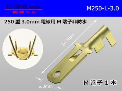 250型(3.0mm2電線用)オス端子/M250-L-3.0