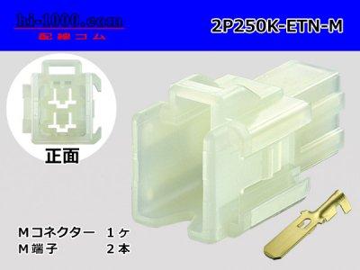 住友電装250型ETNシリーズ2極(平行)M側コネクタ端子付/2P250K-ETN-M