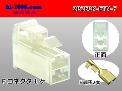 住友電装250型ETNシリーズ2極(平行)F側コネクタ端子付/2P250K-ETN-F