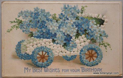 ワスレナグサとスズランの花車 - My Best Wishes for Your Birthday  -