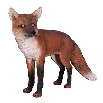狐・きつね・キツネ☆アカギツネのビッ...