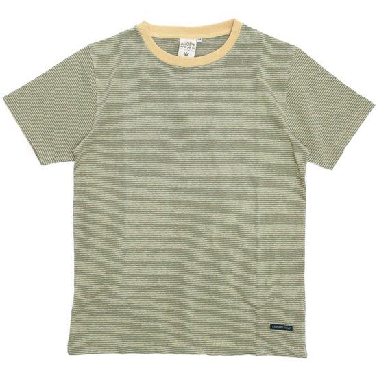 A HOPE HEMP(アホープヘンプ) Regular Stripe S/S Tee (ハーベスト)(Tシャツ)(ストライプTEE)