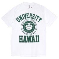 University of Hawaii ハワイ大学|カレッジ Tシャツ (ホワイト)(プリントTEE)