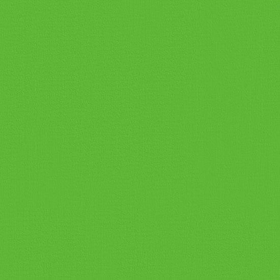 パロットグリーンの無地のファブリック Fab-muji_prtgreen 【4yまでメール便可】