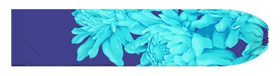 ヒスイ色と青のパウスカートケース トーチジンジャー大柄 pcase-2776JDBL【メール便可】★オーダーメイド