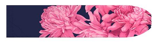 ピンクと青のパウスカートケース トーチジンジャー大柄 pcase-2776PiBL【メール便可】★オーダーメイド