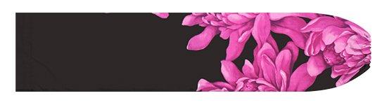 紫と黒のパウスカートケース トーチジンジャー大柄 pcase-2776PPBK【メール便可】★オーダーメイド
