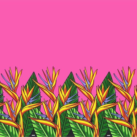 ピンクのハワイアンファブリック バードオブパラダイス柄 fab-2784Pi 【4yまでメール便可】