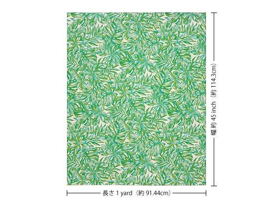 【カット生地】(1ヤード) クリーム色と緑のハワイアンファブリック ティアレ・モンステラ柄 fab-1y-2576CRGN 【4yまでメール便可】