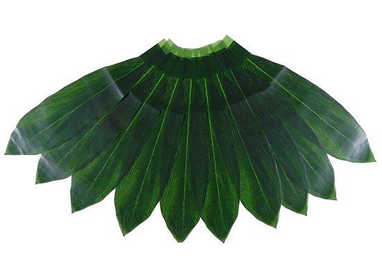 ハワイアン ティリーフ(10枚入) hawaiian-ti-leaves