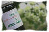 ORANGE BLOSSOM オレンジ・ブロッサム10ml<img class='new_mark_img2' src='//img.shop-pro.jp/img/new/icons40.gif' style='border:none;display:inline;margin:0px;padding:0px;width:auto;' />