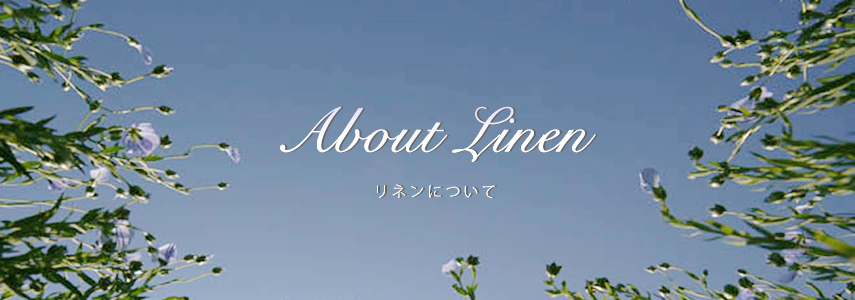 About Linen