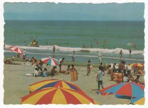 絵葉書 千葉県 鴨川 サーフィンも出来る鴨川海水浴場
