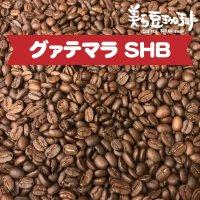 グァテマラ SHB 100g