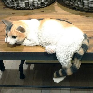 <B>【入荷未定】</B>猫のオブジェ ベニーズキャット(33×20×H11cm)<img class='new_mark_img2' src='https://img.shop-pro.jp/img/new/icons47.gif' style='border:none;display:inline;margin:0px;padding:0px;width:auto;' />