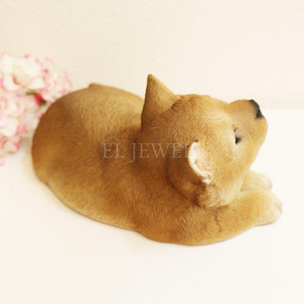 【即納可!】 アニマルオブジェ♪柴犬・リラックス(W18.2×D11.4×H9cm)