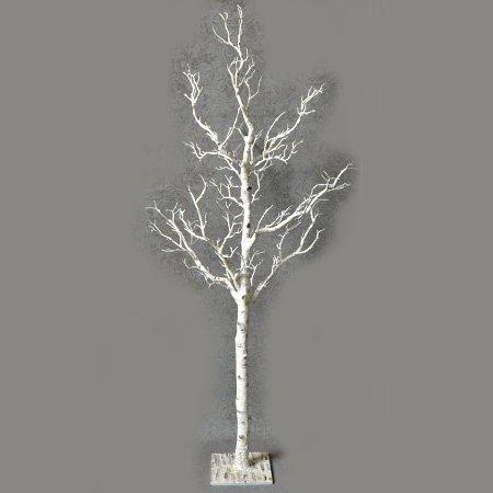【完売】 ホワイトバーチウッドツリー(H120cm)