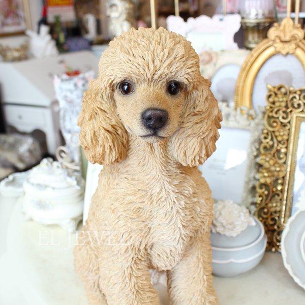 【即納可!】犬のオブジェ♪プードル(16×27×H33cm)