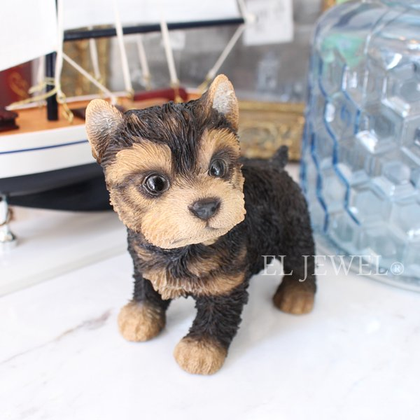 【即納可!】子犬のオブジェ♪ヨークシャー(8×13×H12.5cm)