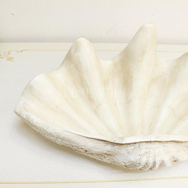 【即納可!】アンティーク調シェルオブジェ・トレー(W46cm)ホワイト