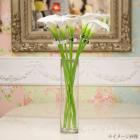 <B>【即納可!】</B>【フラワーベース】ガラス製ピラー・フラワーベース(花器) φ10×H40cm