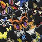 輸入壁紙<b>【フランス・Christian Lacroix】</b>Butterfly Parade ブラック系 52cm巾×10.05m巻