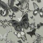 輸入壁紙<b>【フランス・Christian Lacroix】</b>Butterfly Parade グレー系 52cm巾×10.05m巻