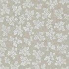輸入壁紙<b>【イギリス・DESIGNERS GUILD】</b>meadow leaf ベージュ系 52cm巾×10.05m巻