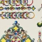 輸入壁紙<b>【フランス・Christian Lacroix】</b>La Main au Collet 52cm巾×10.05m