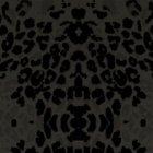 輸入壁紙<b>【フランス・Christian Lacroix】</b>Santo Sospir ブラック系 52cm巾×10.05m