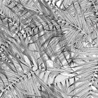 輸入壁紙<b>【フランス・Christian Lacroix】</b>ジャングル柄 Croisette ブラック系 45cm巾×24m巻