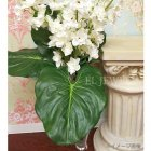 <b>【即納可!】</b>【Art silk flower】「エレファントイヤーリーフ」グリーン  L76cm 5本セット<img class='new_mark_img2' src='https://img.shop-pro.jp/img/new/icons24.gif' style='border:none;display:inline;margin:0px;padding:0px;width:auto;' />
