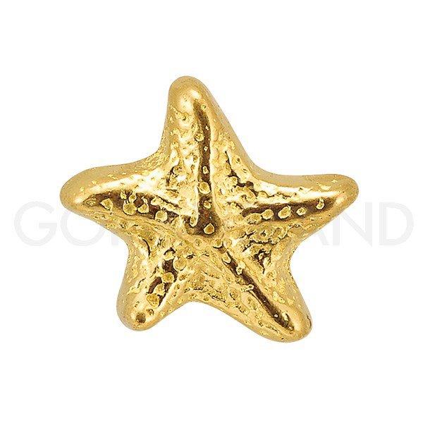 真鍮製 取っ手 (つまみ) 「ヒトデ」 ゴールド (W3.1×D2.8×H3.7cm)**