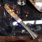 <b>【即納可!】</b>キラキラ♪ 【フランス-Aulica】チーズナイフ(L18cm)