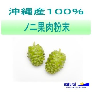沖縄産100%ノニ果肉粉末パウダー500g(100gx5)【メール便送料無料】