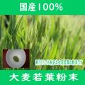 <img class='new_mark_img1' src='https://img.shop-pro.jp/img/new/icons29.gif' style='border:none;display:inline;margin:0px;padding:0px;width:auto;' />国産100%大麦若葉粉末パウダー500g(100gx5)【送料無料・代金引換手数料無料】