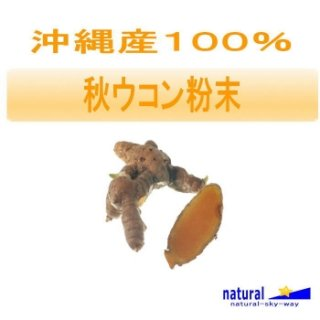 沖縄産100%秋ウコン粉末パウダー100g