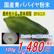【最終処分品賞味期限2018.3.31】国産100%青パパイヤ粉末パウダー100g