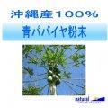 沖縄産100%青パパイヤ粉末パウダー100g