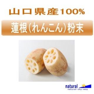 山口県産100%蓮根(れんこん)粉末パウダー100g