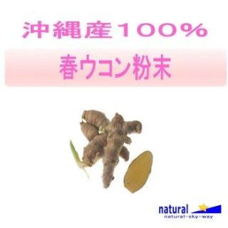 沖縄産100%春ウコン粉末パウダー500g(100gx5)【メール便送料無料】