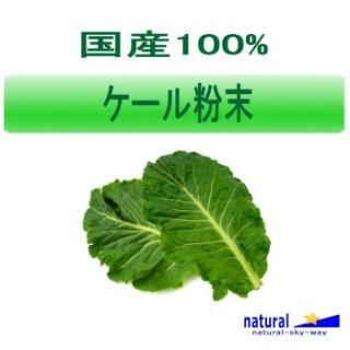 国産100%ケール粉末パウダー1kg(100gx10)【宅配便送料無料】