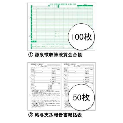 201832 平成29年分 弥生ページプリンタ用 賃金台帳/給与支払報告書セット 100人用