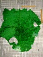 ムートン 羊皮 羊革 GREEN グリーン 緑|ムートン060